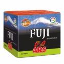 Petardos: Batería  Fuji 25 disparos