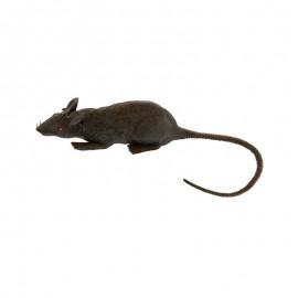 Rata de Goma para decoración